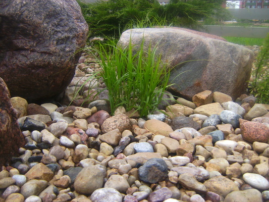 Установка каменных садов