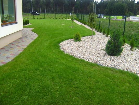 Все виды травеных покрытий